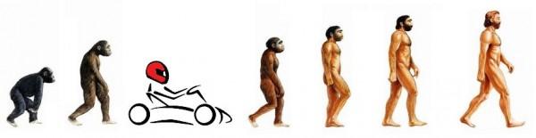 Echelle de l'évolution ramené à KFF!